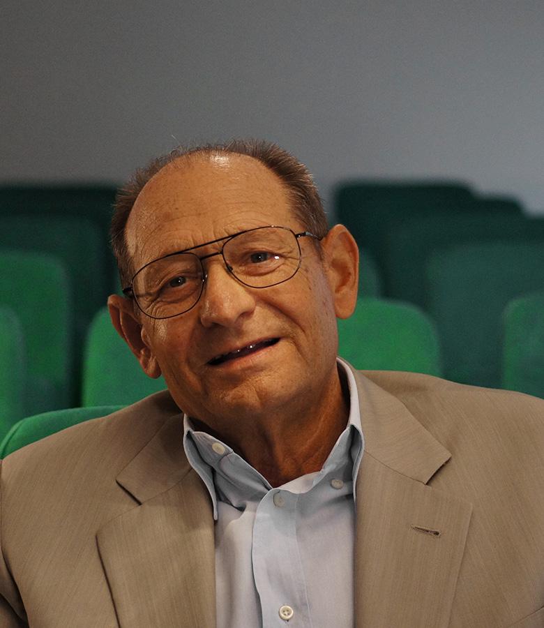 Domenico Monticelli
